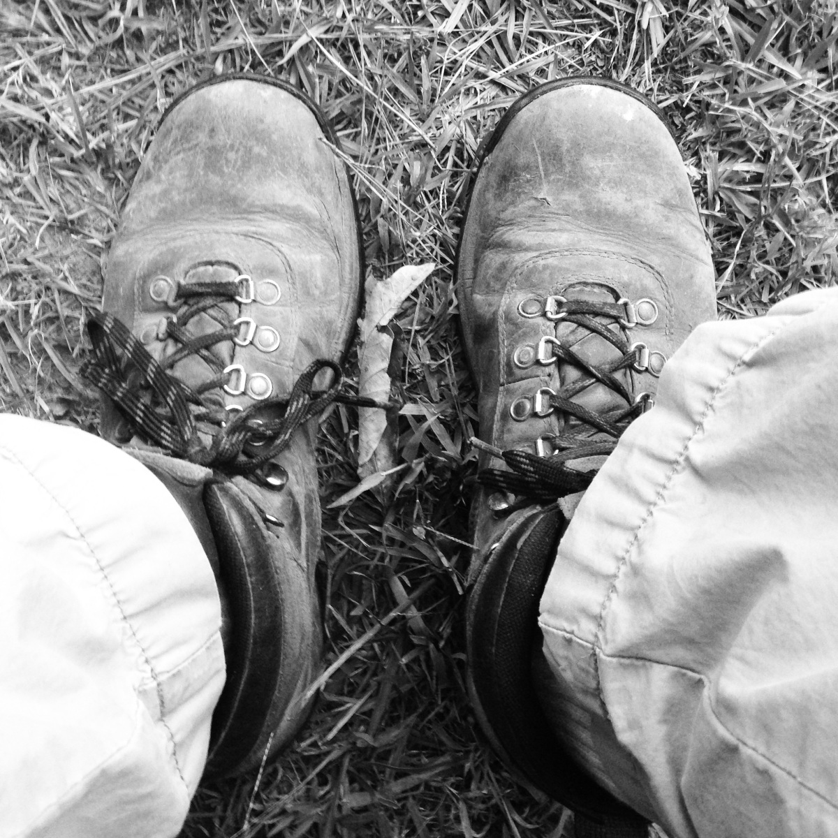 Old Boots and OldFriends